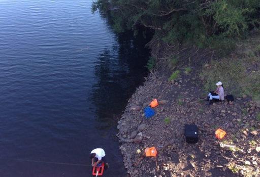 Evaluación de la variabilidad espacio-temporal en calidad de agua en la Cuenca del Rio Queguay