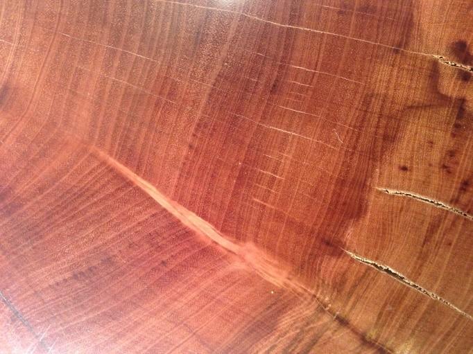 Patrones temporales en los anillos anuales de árboles y su vínculo con el clima y la hidrología