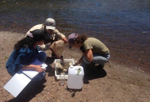 Calidad y cantidad de agua en la Cuenca del Río Queguay